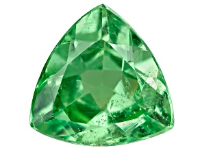 Green Garnet Tsavorite 6mm Trillion .50ct