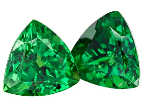 Green Garnet Tsavorite 6.2mm Trillion 1.00ct