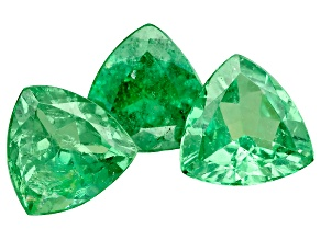 Tsavorite Garnet 5.25mm Trillion Set of 3 1.72ctw