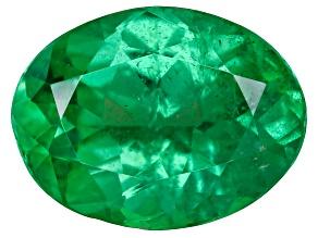 Green Garnet Tsavorite 8x6mm Oval 1.15ct