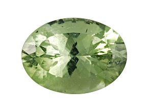 Green Tourmaline 18x13mm Oval 12.62ct
