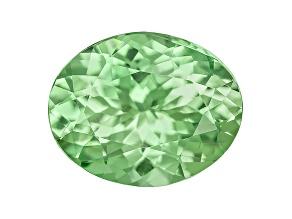 Grossular Garnet Fluorescent 10x8mm Oval 2.55ct