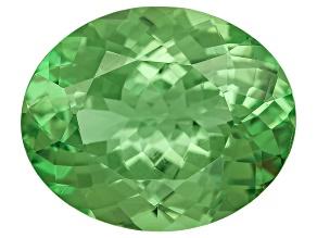 Garnet Mint Tsavorite Fluorescent 11x9mm Oval 3.20ct