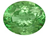Garnet Mint Tsavorite Fluorescent 11x9mm Oval 3.20ct
