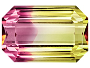 Bi-Color Tourmaline 17.29x11.31mm Emerald Cut 12.58ct