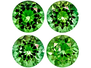 Chrome Tourmaline 5mm Round Set 1.92ctw