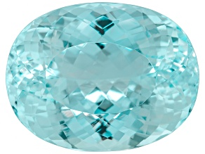 Paraiba Tourmaline 21.60x16.64mm Oval 26.94ct