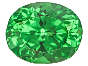 Garnet Tsavorite 11.28x9.18x7.6mm Oval Modified Portuguese 6.00ct