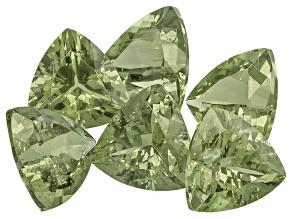 Green Apatite 7x7mm Trillion Mixed Step Cut Set 7.36ctw