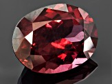Garnet Rhodolite 12.9x9.54mm Oval 6.36ct