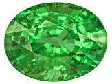 Garnet Tsavorite 9.71x7.42mm Oval 3.13ct