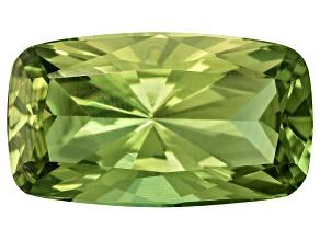 Green Apatite 18.2x10.4mm Rectangular Cushion 10.08ct