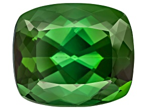 Green Tourmaline 11.69x10.00mm Cushion 6.69ct