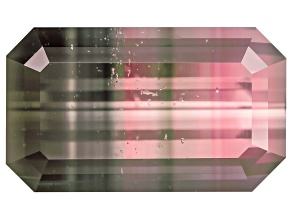 Bi-Color Tourmaline Untreated 12.73x7.5mm Emerald Cut 4.95ct