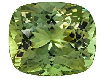 Picture of Green Apatite Unheated 18.86x16.11x12.11mm Rectangular Cushion 24.57ct