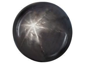 Sri Lankan 12-Ray Black Star Sapphire 15.11ct 12.50x12.43x10.15mm Round Cabochon Gemworld Rpt