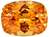 Garnet Spessartite 9.11x6.97mm Rectangular Cushion 2.65ct