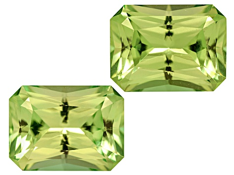 Set Of 2 Kenyan Tsavorite Garnet 2.52ctw 7.3 X5.4mm Rectangular Octagonal Radiant Cut