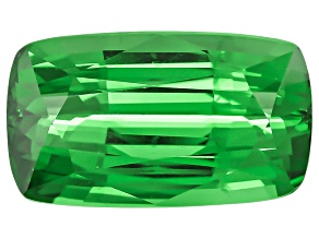 Garnet Tsavorite 10.2x5.8mm Rectangular Cushion Mixed Step 2.40ct