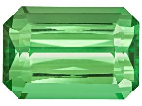 Tsavorite Garnet 10.24x7x5.23mm Emerald Cut Step Cut 3.69ct