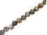 """Fossil Stone Appx 8mm Faceted Round Large Hole Bead Strand Appx 7-8"""" Length"""