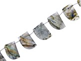 Labradorite Faceted Fancy Teeth appx 12x16mm-15x20mm Bead Strands appx 8-9