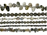 Labradorite Bead Strand Set of 6 in Assorted Shapes appx 15-16