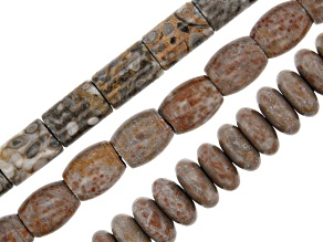 Fossil Limestone Large Hole Bead Strand Set of 3 in Assorted Shapes appx 15-16