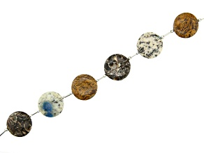 Shell Jasper, Azurite in Granite, & Mixed Ornamental Stone Puffy Coin Shaped Bead Strand Appx 8