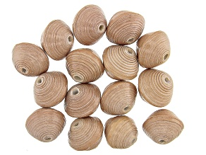 Akola Large Paper Bead Set of 15 in Natural Color
