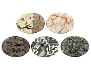 Oval Cabochon Set/5 Apx 30x40mm in Paint Brush Jasper, Fossiljasper,Blk/Wht Jasper,Red Jasper&Marble