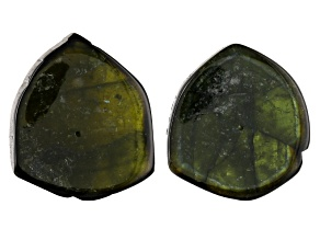 Tourmaline Rough Slices 2 Piece Set Appx 30 Cts