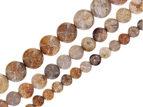 Fossilized coral round appx 6mm, 8mm & 10mm bead strand set of 3 appx 15-16""