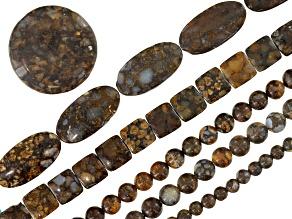 Fire Opal bead set incl 5 assorted shape strands and 1 focal