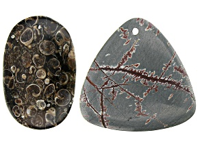 Rhyolite appx 34mm Rounded Triangle Pendant & Turritella Agate appx 26x60mm Free-Form Oval Pendant