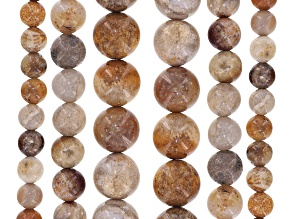 Fossilized Coral Round Appx 6mm, 8mm & 10mm Bead Strand Set of 6 Appx 15-16