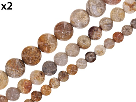 Fossilized Coral Round Appx 6mm, 8mm & 10mm Bead Strand Set of 6 Appx 15-16""