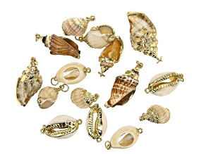 Shell Components Set of 15 in 3 Styles with Gold Tone Accents