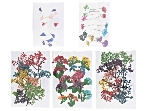 Dried Flower Kit for Resin Projects in Assorted Colors Appx 54 Pieces