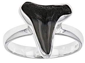 Men's Shark Tooth Sterling Silver Ring