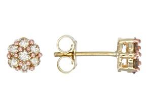 Champagne Diamonds 10k Yellow Gold Earrings .50ctw
