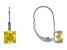 Bella Luce® 3.13ctw Yellow Diamond Simulant Silver Leverback Earrings