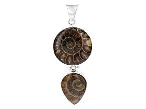 Brown Ammonite Silver Pendant
