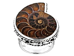 Brown Ammonite Shell Oxidized Sterling Silver Solitaire Ring