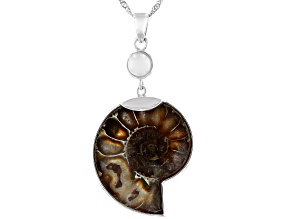 Brown Ammonite Shell Sterling Silver Solitaire Oxidized Pendant With Chain