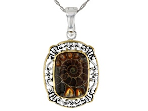 Brown Ammonite Shell Rhodium & 18k Gold Over Silver Two-Tone Enhancer With Chain
