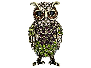 Off Park ® Collection Multicolor Swarovski Elements ™ Antiqued Gold Tone Owl