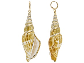 Multicolor Seashell Simulant Gold Tone Dangle Earrings