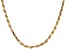 10KT Yellow Gold Diamond Cut Rope Necklace 22