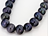 Black Cultured Freshwater Pearl Silver Strand Necklace
